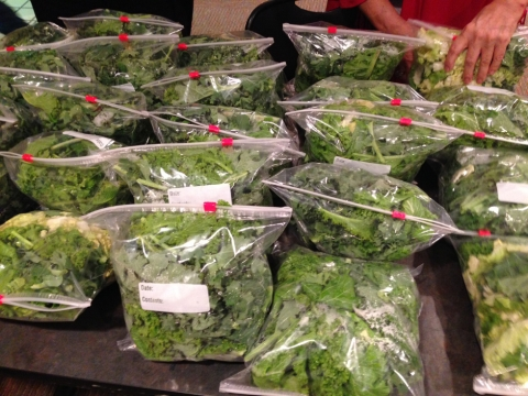 Green Groceries Gives Back
